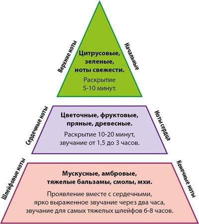 Struktura-aromata